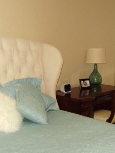 Livingston Guest Bedroom 4 - Interiors by Monique
